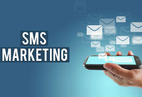 Case Study on SMS marketing platform
