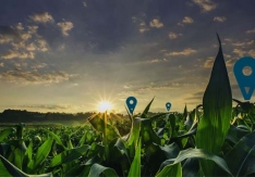 Sony Unveils Agriculture Solution for Crop Management
