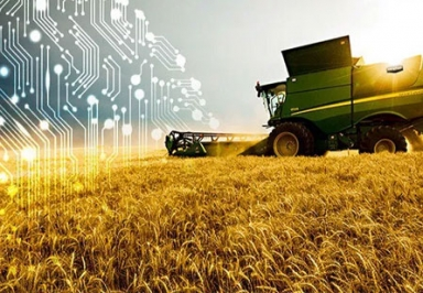 AI Set to Take Agriculture Market by Storm