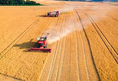 Agricultures Connected FutureTechnology's Role in Yielding New Grow