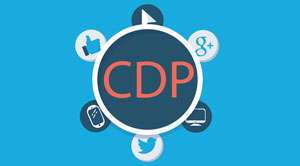 CDP in business